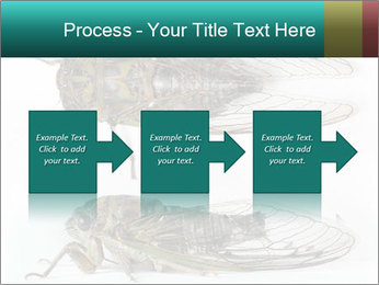 0000079871 PowerPoint Template - Slide 88