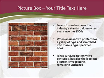 0000079874 PowerPoint Template - Slide 13
