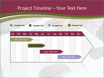 0000079874 PowerPoint Template - Slide 25