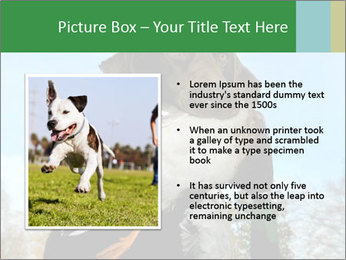 0000079875 PowerPoint Template - Slide 13