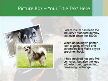 0000079875 PowerPoint Template - Slide 20