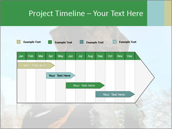 0000079875 PowerPoint Template - Slide 25