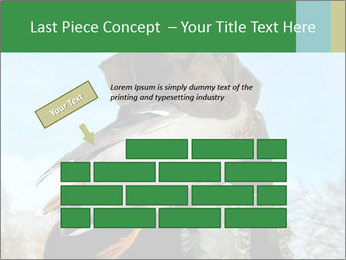 0000079875 PowerPoint Template - Slide 46