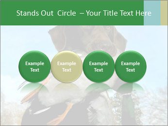 0000079875 PowerPoint Template - Slide 76