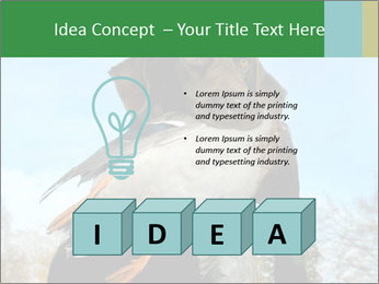 0000079875 PowerPoint Template - Slide 80