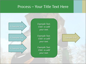 0000079875 PowerPoint Template - Slide 85