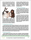 0000079875 Word Templates - Page 4
