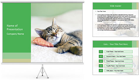 0000079878 PowerPoint Template