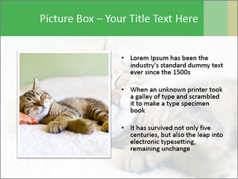 0000079878 PowerPoint Templates - Slide 13