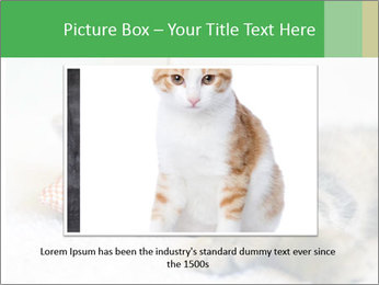 0000079878 PowerPoint Templates - Slide 16