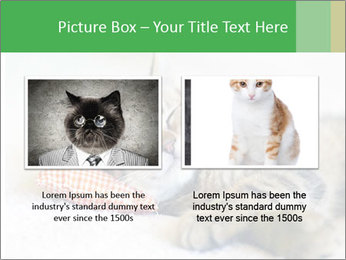 0000079878 PowerPoint Templates - Slide 18