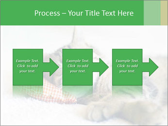0000079878 PowerPoint Templates - Slide 88