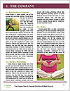0000079881 Word Templates - Page 3