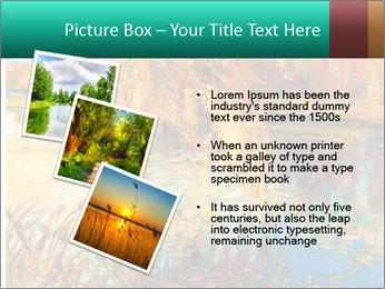 0000079884 PowerPoint Template - Slide 17