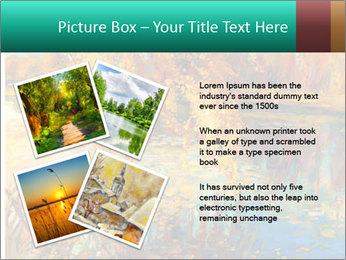 0000079884 PowerPoint Template - Slide 23