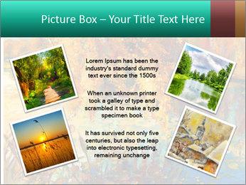 0000079884 PowerPoint Template - Slide 24