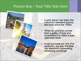 0000079888 PowerPoint Templates - Slide 17