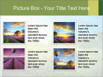 0000079889 PowerPoint Templates - Slide 14