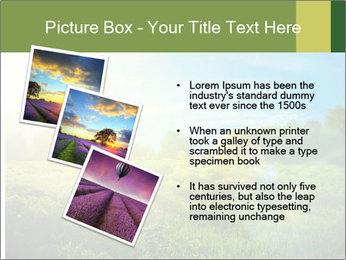 0000079889 PowerPoint Template - Slide 17
