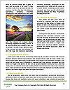 0000079889 Word Template - Page 4