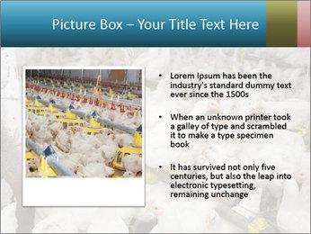 0000079891 PowerPoint Templates - Slide 13