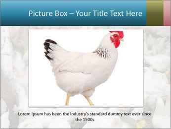 0000079891 PowerPoint Templates - Slide 15