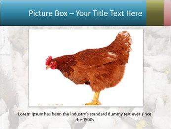 0000079891 PowerPoint Template - Slide 16
