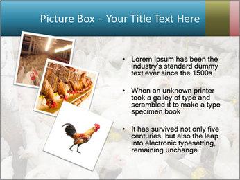 0000079891 PowerPoint Templates - Slide 17