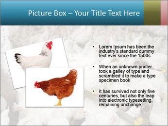 0000079891 PowerPoint Template - Slide 20