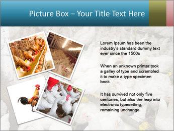 0000079891 PowerPoint Templates - Slide 23