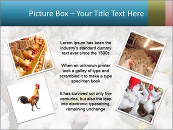 0000079891 PowerPoint Template - Slide 24