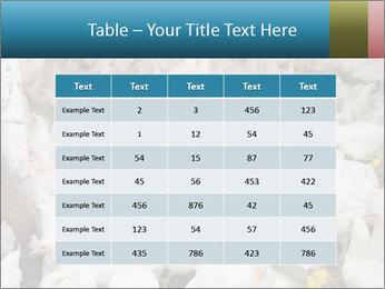 0000079891 PowerPoint Templates - Slide 55