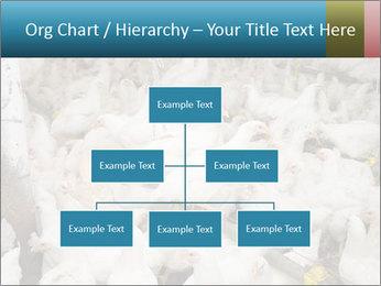 0000079891 PowerPoint Template - Slide 66
