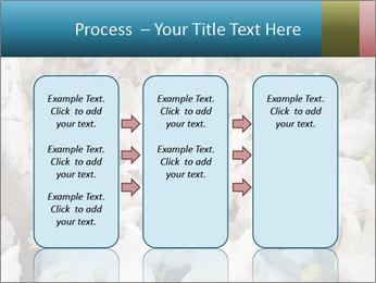0000079891 PowerPoint Templates - Slide 86