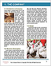 0000079891 Word Templates - Page 3
