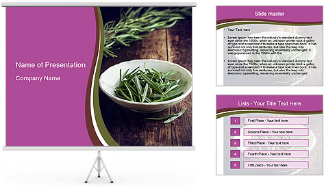0000079894 PowerPoint Template