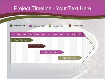 0000079894 PowerPoint Template - Slide 25
