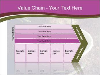 0000079894 PowerPoint Template - Slide 27
