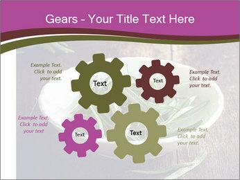 0000079894 PowerPoint Template - Slide 47