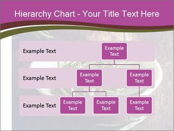 0000079894 PowerPoint Template - Slide 67