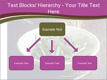 0000079894 PowerPoint Template - Slide 69