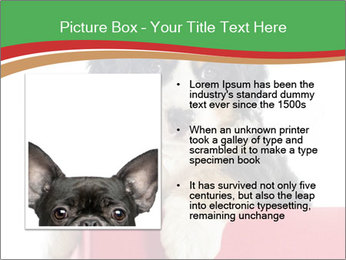 0000079904 PowerPoint Templates - Slide 13