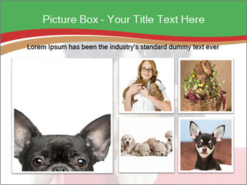 0000079904 PowerPoint Templates - Slide 19