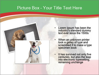 0000079904 PowerPoint Template - Slide 20