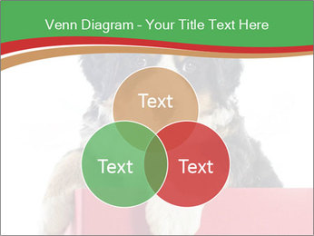 0000079904 PowerPoint Template - Slide 33