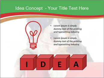 0000079904 PowerPoint Templates - Slide 80