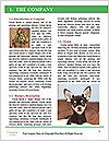 0000079904 Word Templates - Page 3