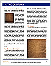 0000079910 Word Templates - Page 3