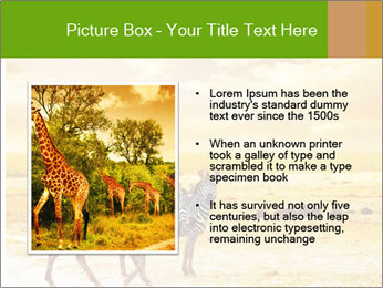 0000079916 PowerPoint Template - Slide 13