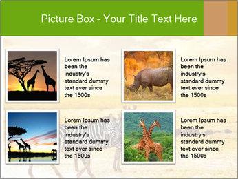 0000079916 PowerPoint Templates - Slide 14